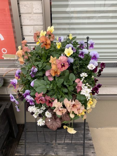 KIT花工房様に花壇を入れ替えていただきました。福山市の整体 福山 整体 ウチダ整体堂