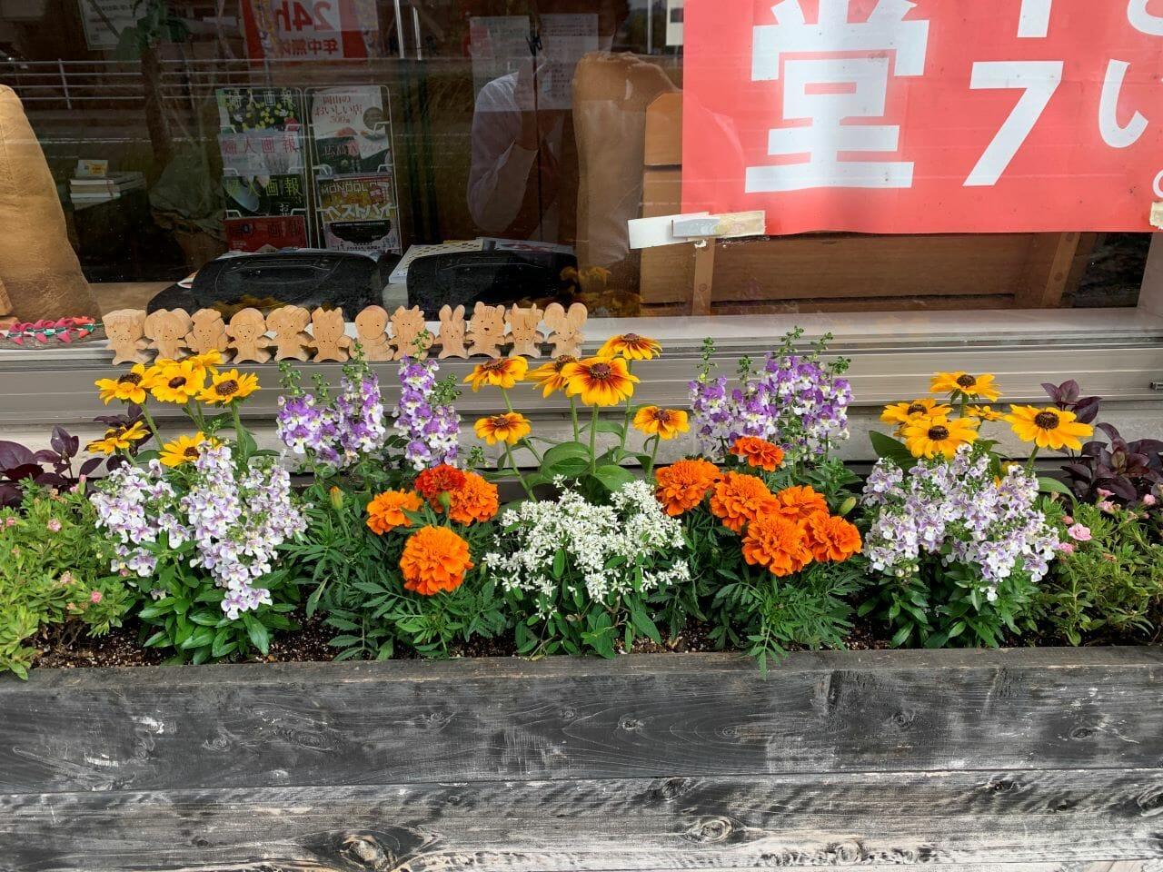 玄関先花壇の植え替えをしていただきました。オレンジのマリーゴールドの香り最高!